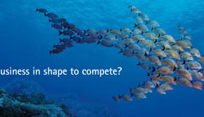 Accenture_HP_Shark_H