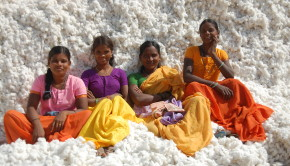 tompkins-point_photo_women-on-cotton