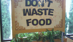 dont waste food
