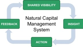 Natural Capital Management System