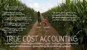 True Cost Accounting: Understanding the Real Cost of Food