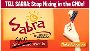 sabra gmo campaign screenshot from gmo inside